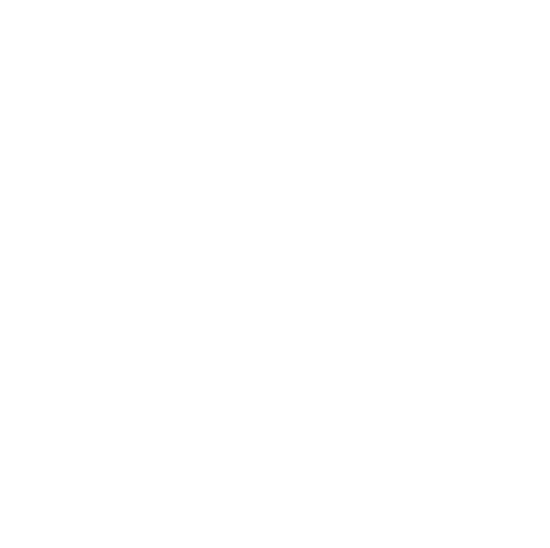 Arise 2019 Women's Conference