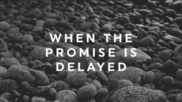 when-the-promise-is-delayed